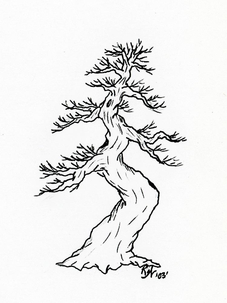 Roberta Walters Drawings b 750x1000