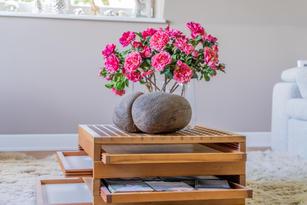 Blumen_Krille-30.jpg