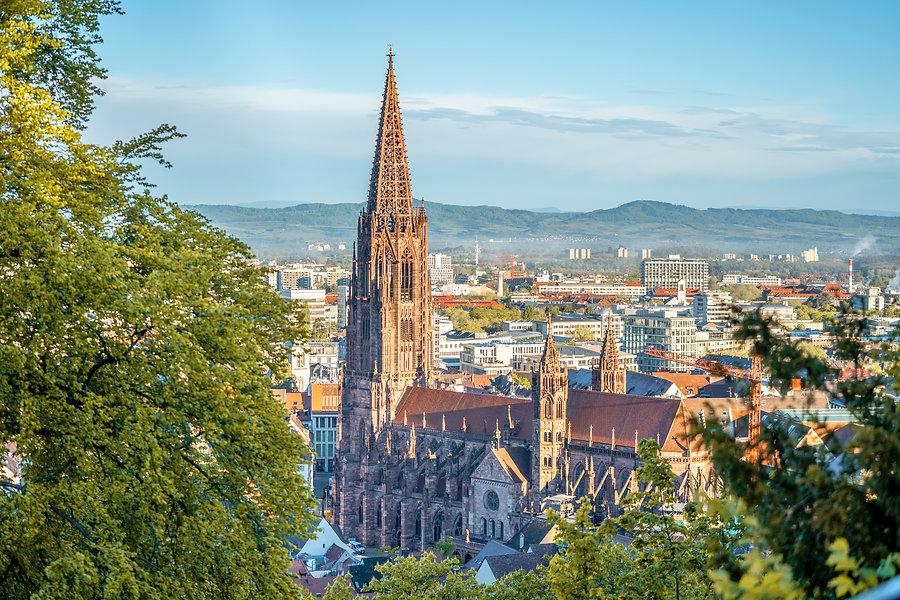 Sonnenaufgang Freiburger Münster im Hochsommer