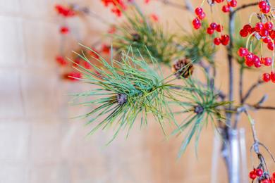 Blumen_Krille-54.jpg