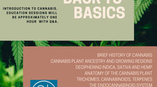"Back To Basics - ""Cannabis 101"""
