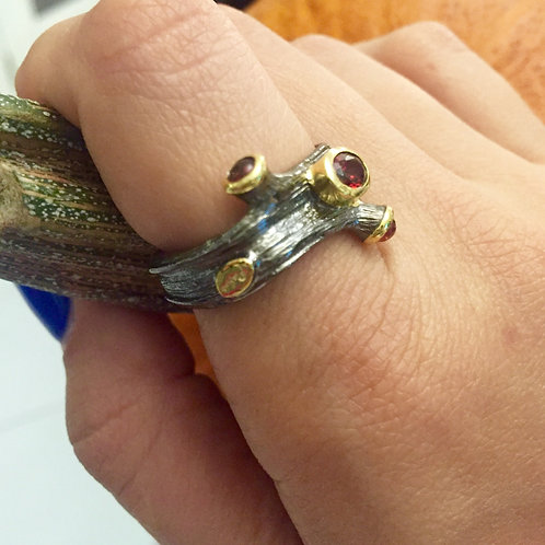 Tree Of Life Collection: Tree Branch Ring
