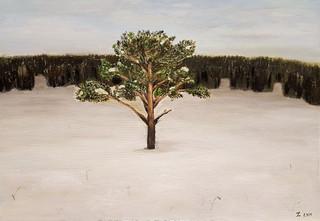 """Сосна"", х.м. (2016)"