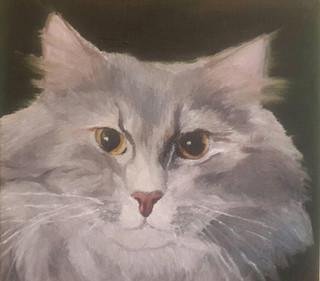 """""""Кот Яша"""", х.м. (2015)"""
