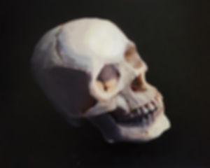 Skull Oil.JPG