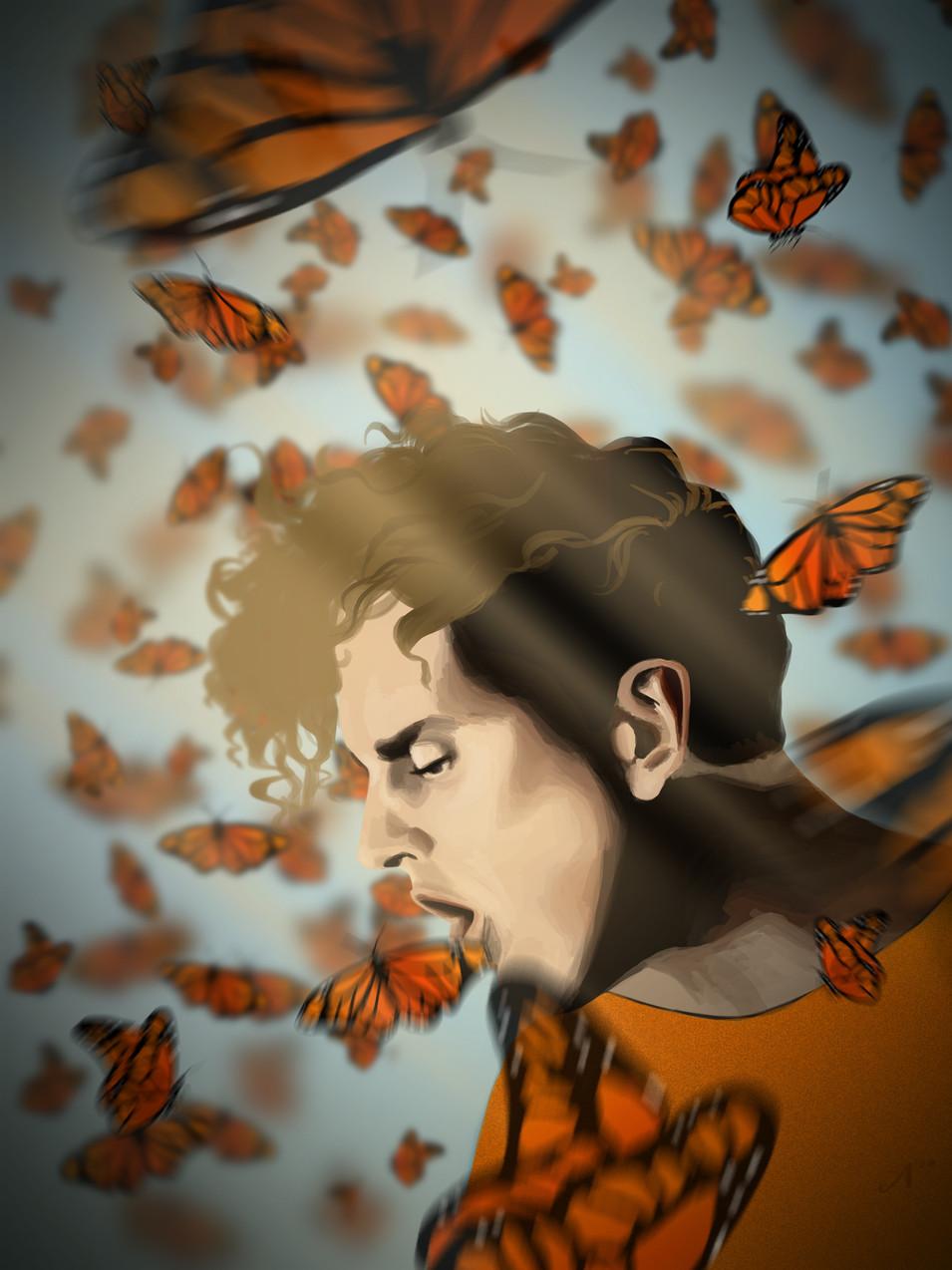 COIN Butterflies.jpg