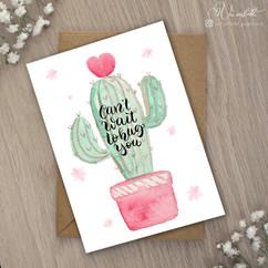 Kaktus Hug