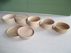 Salad bowls and lids