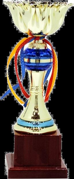 Cup trophy SMC5013