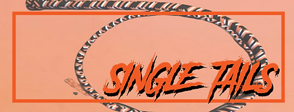 single tails-13.png