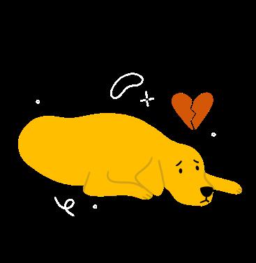 sad dog.png