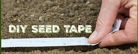 DIY Seed Tape.png
