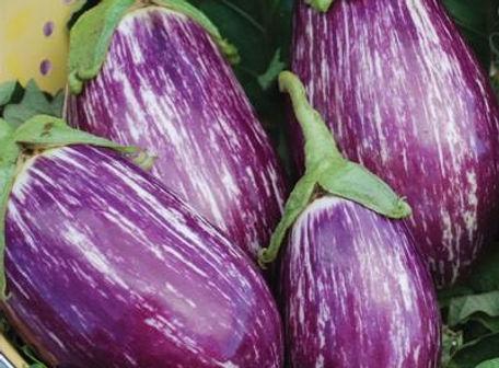 listada-de-gandia-eggplant.jpg