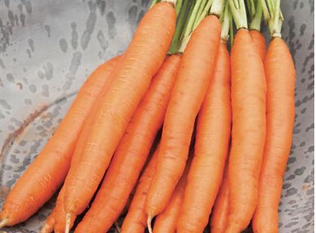 Romance Carrot.jpg