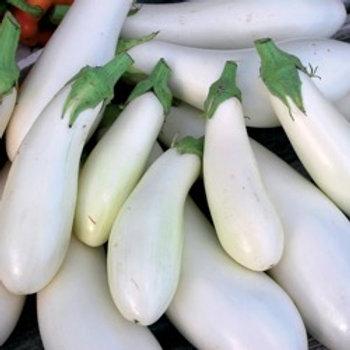 White Casper Eggplant