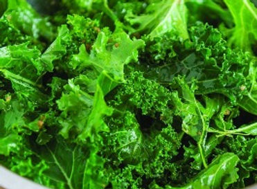 Ethiopian Blue Kale.jpg