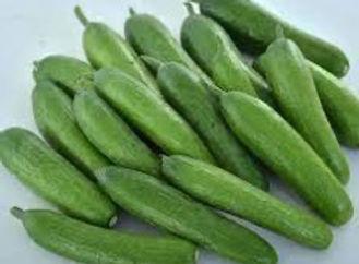 Green Light Cucumber.jpg