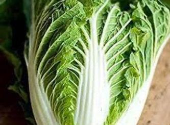 Emiko Chinese Cabbage.jpg