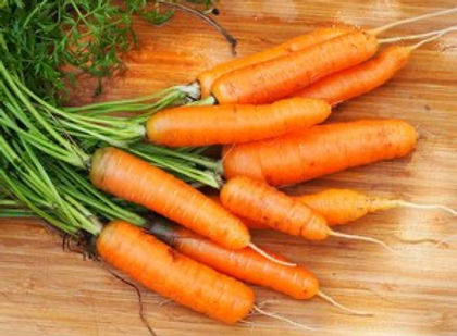 Scarlet Nantes Carrot.jpg