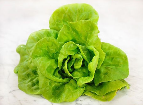 Butter King Lettuce.jpg