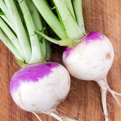 White Globe Purple Top Turnip (seed packets)