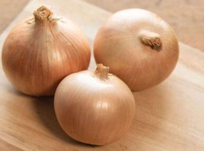 Calibra Onion.jpg