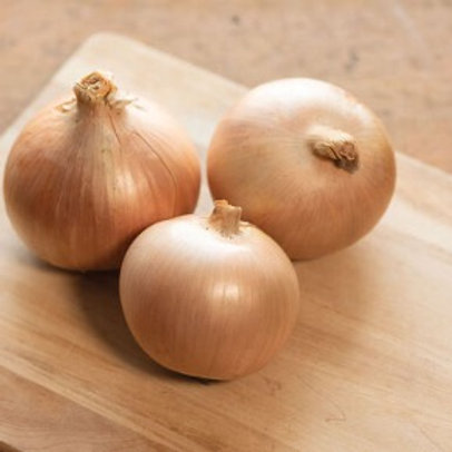 Calibra Onions (seed packets)