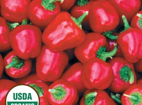 Miniture Red Pepper.jpg