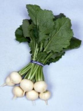 Kanamachi Turnip (seed packets)