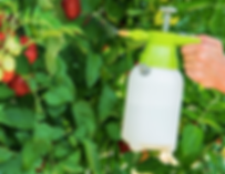 garden sprayer.png