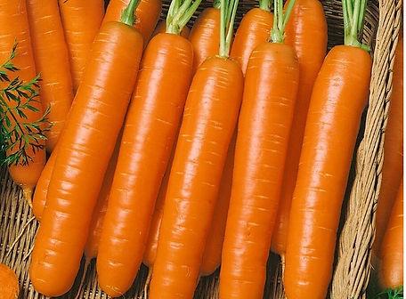 Little Finger Carrot.jpg