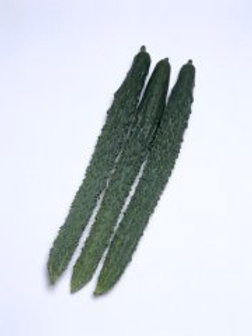 Palace Pride Hybrid Cucumber (seed packet)