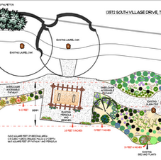 Wildflower Garden Plan