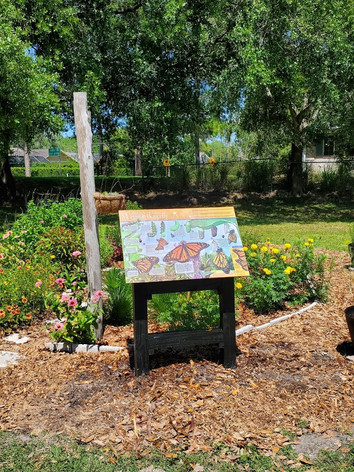 Pollinator Garden by the Laurel Oak tree