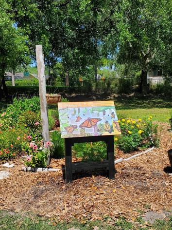 Pollinator Garden by the Laurel Oak tree