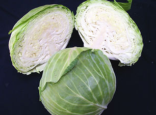 Image Early Flat Dutch cabbage (1).jpg