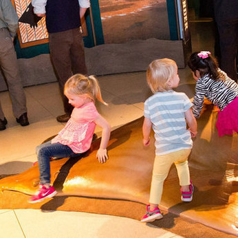 How To Guide For: A Look At Kid Friendly Museums, Galleries & Exhibits