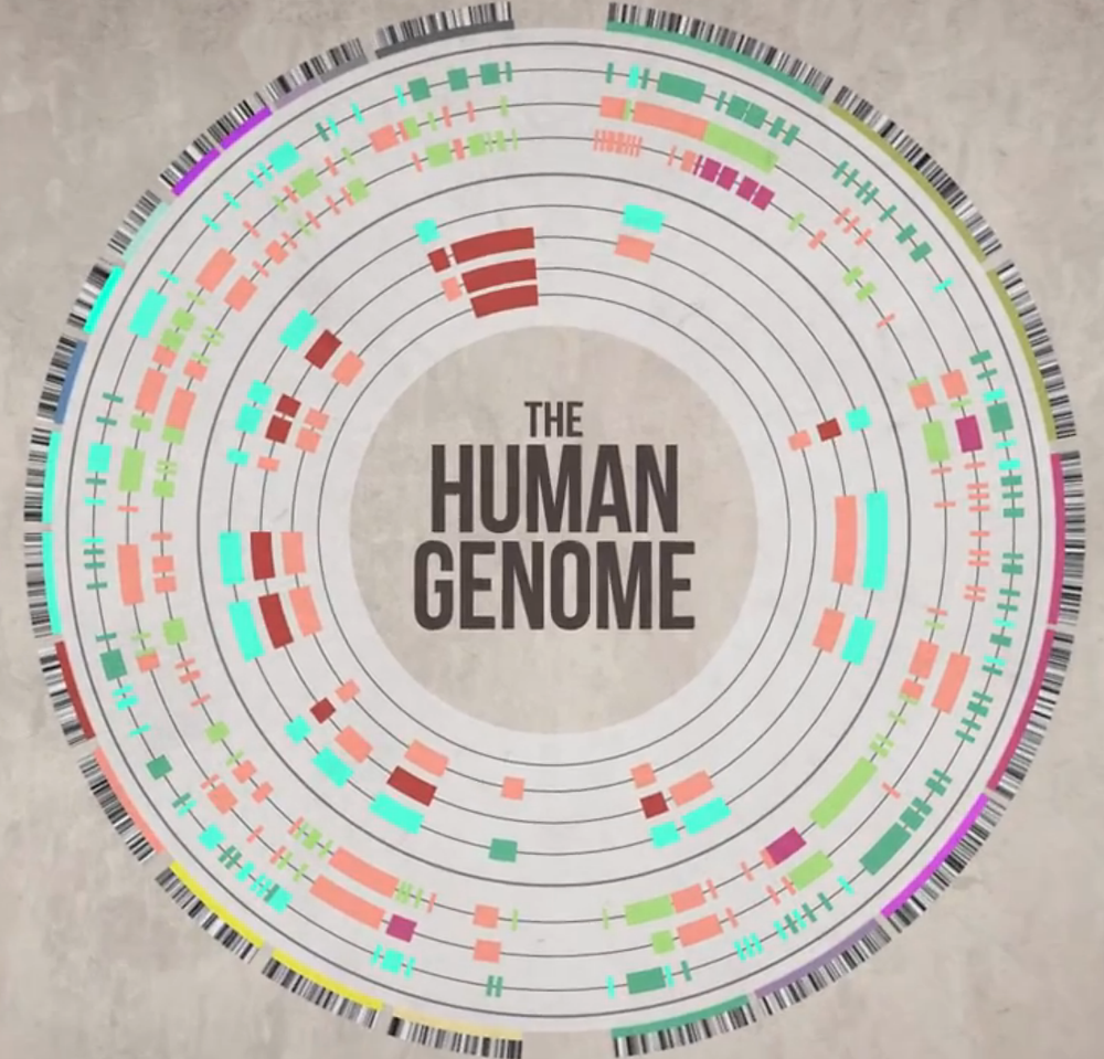 The Human Genome Was Never Completely Sequenced - Read More from Scientific American
