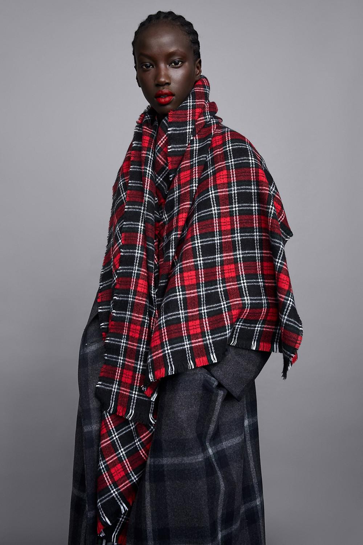 Zara Soft Plaid Scarf $29.90