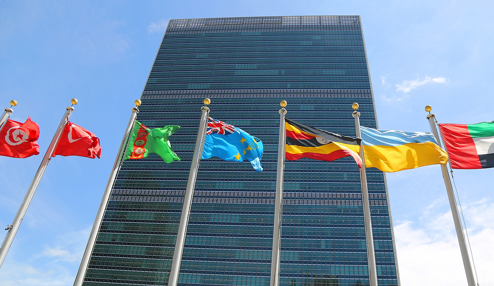 Crypto Startup Blockchain Partners With UN on Sustainability Goals - Read More from Coindesk