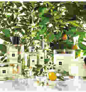 Jo Malone London Orange Blossom Cologne $136