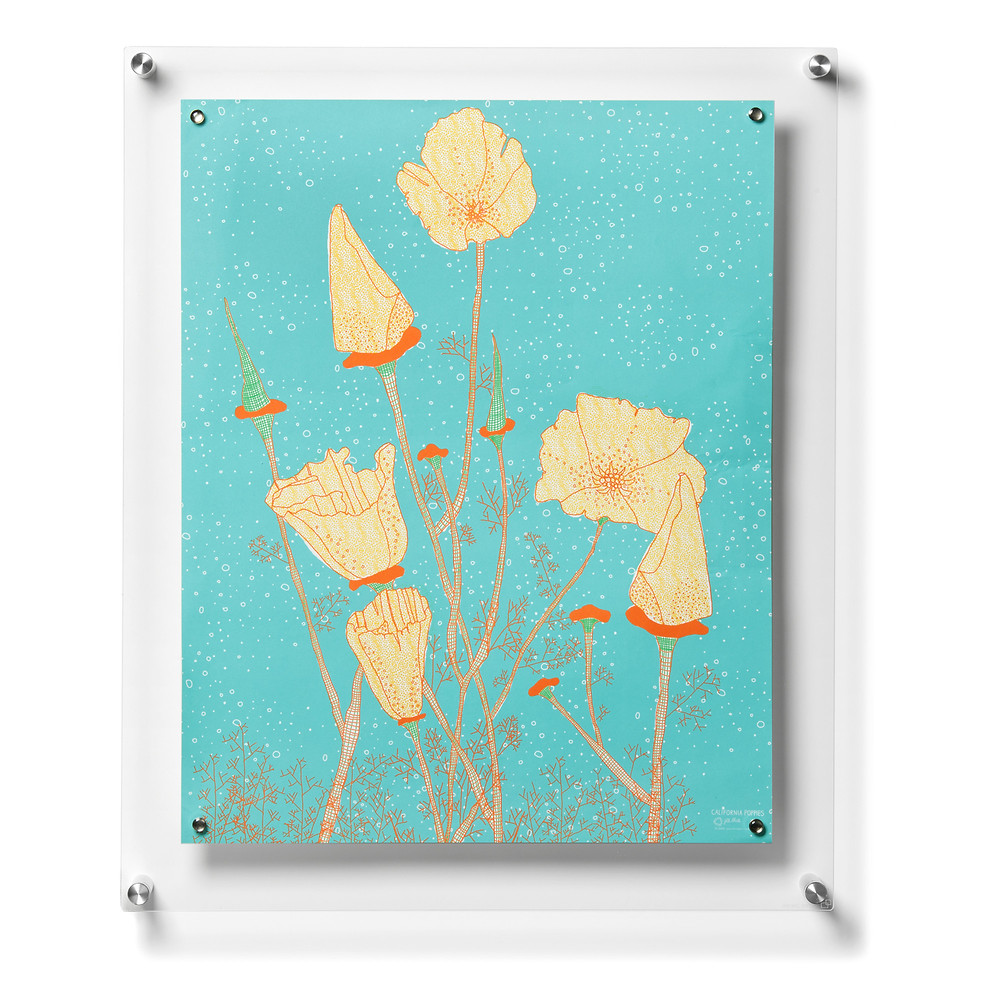 Popster Floating Picture Frame by Wexel Art sold at Wayfair.com $92.11-Check out Wayfair.com for more Magnetic Frames & Prints