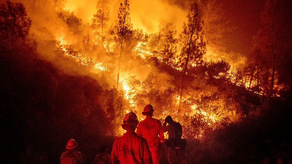 Verizon Throttled Fire Department's 'Unlimited' Plan While They Were Fighting Mendocino Complex Fire - Read More from Gizmodo