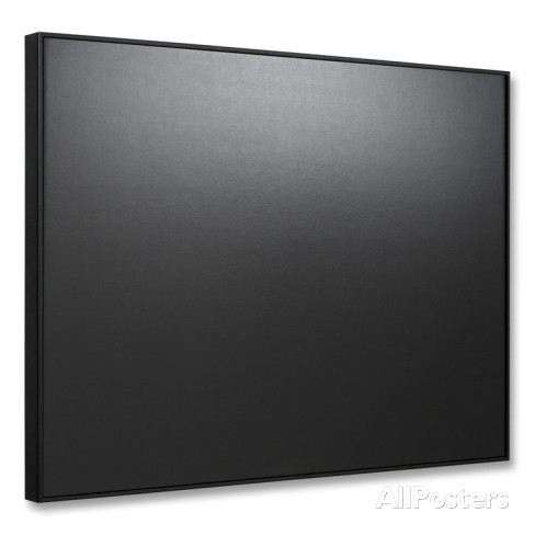 SwitchArt® Black Frame sold at AllPosters.com for $48.99-Frame also comes in white