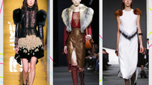 How to Guide for: Everything Fur
