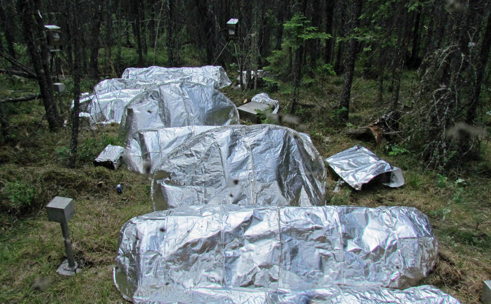 New NASA-Inspired Fire Shelters Could Better Withstand Blazes - Read More from Scientific American
