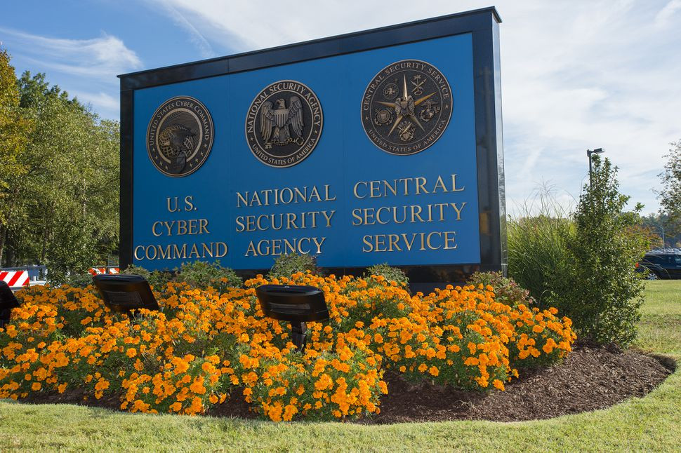 Ex-NSA employee gets 5 years in prison for taking home top secret files - Read More from CNET