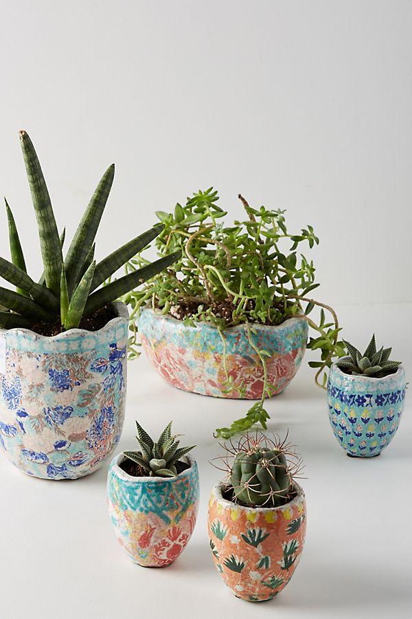 Bismark Garden Pot $8.00-$16.00