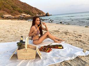 model beach picnic.jpg