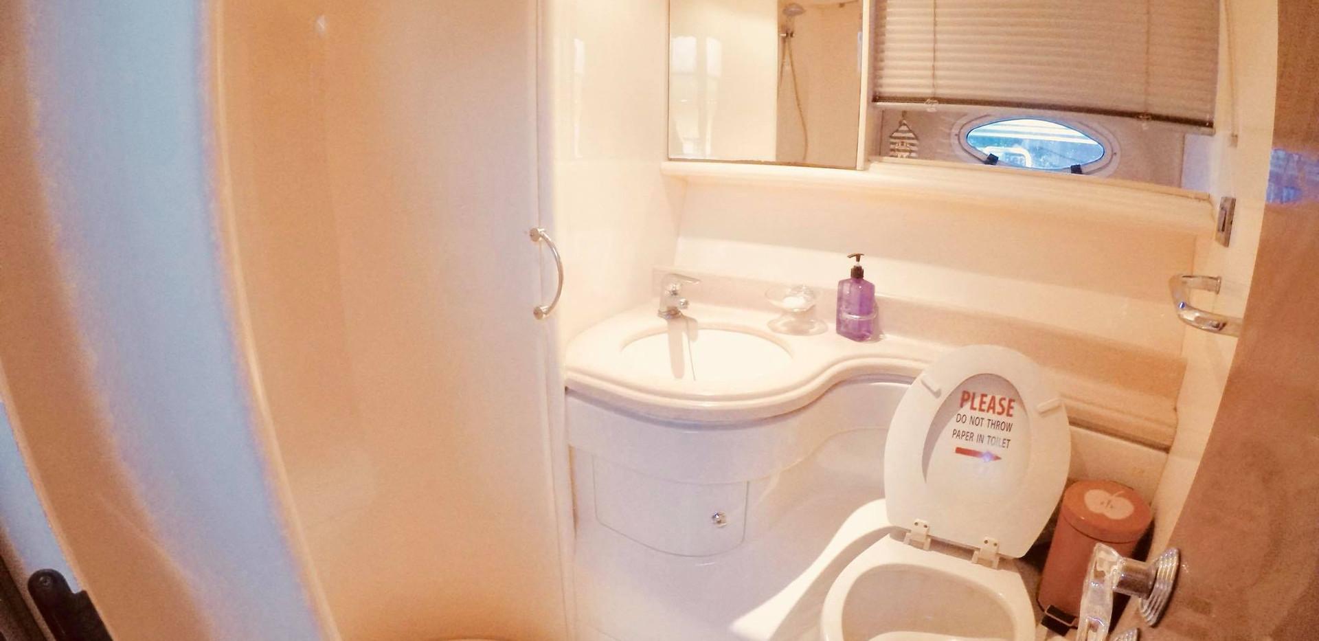 MY460 toilet.jpg